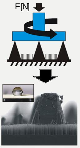 140324-langmuir-microcones.jpg