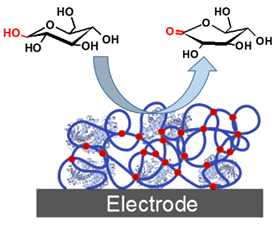 140415-biofuelcell-electrode.png